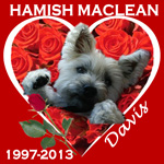 In Memory of Hamish Maclean