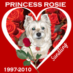 In Memory of Princess Rosie