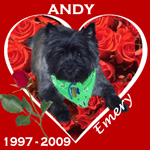 In Memory of Andy