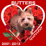 In Memory of Butters