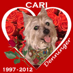 In Memory of Cari