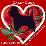 In Memory of Casey
