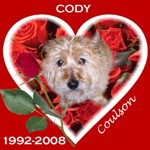 In Memory of Cody