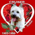 In Memory of Cruiser