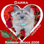 In Memory of Darra