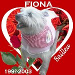 In Memory of Fiona
