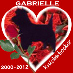 In Memory of Gabrielle
