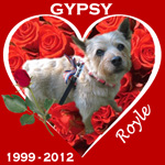 In Memory of Gypsy