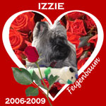In Memory of Izzie
