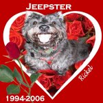 In Memory of Jeepster