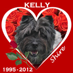 In Memory of Kelly