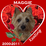 In Memory of Maggie
