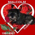 In Memory of Malcolm