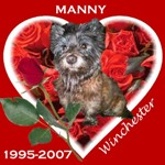 In Memory of Manny