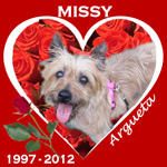 In Memory of Missy