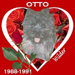 In Memory of Otto