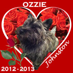 In Memory of Ozzie