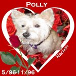 In Memory of Polly