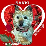 In Memory of Sakki
