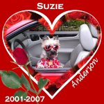 In Memory of Suzie