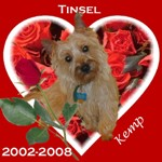 In Memory of Tinsel