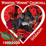 In Memory of Winston Winnie Churchill